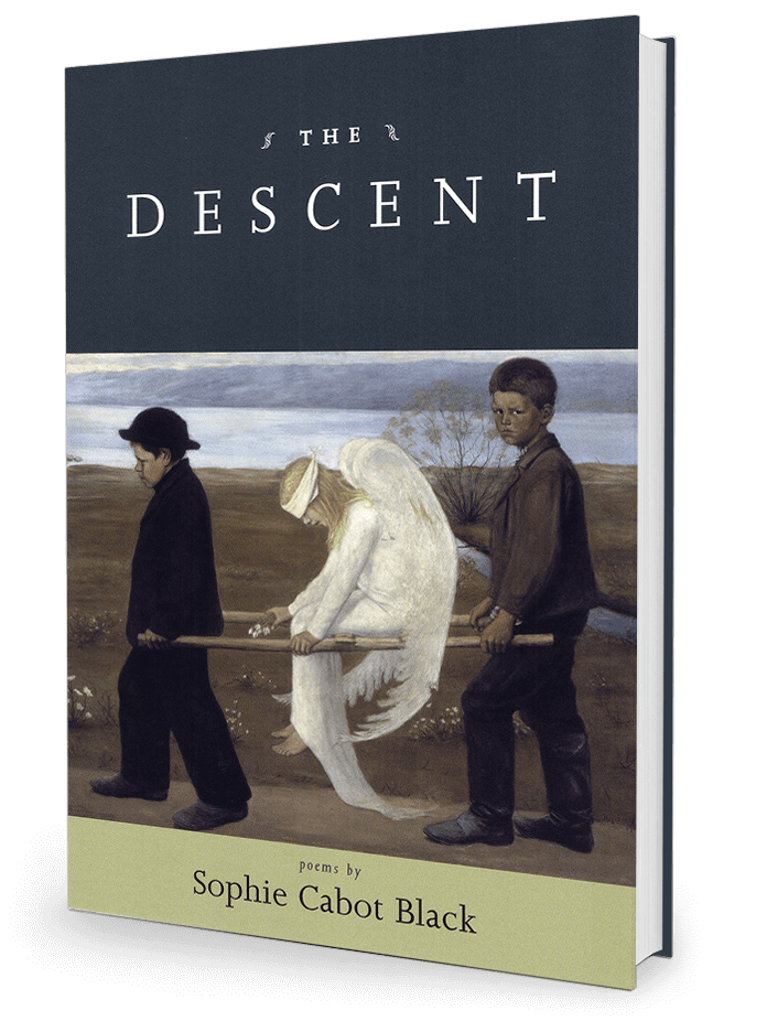 The Descent by Sophie Cabot Black