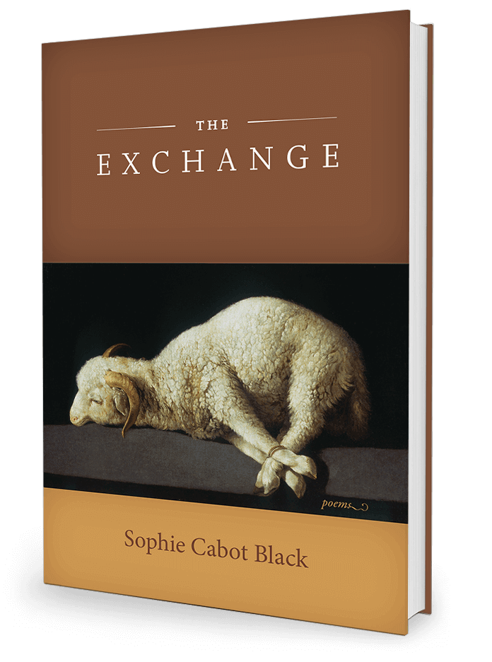 The Exchange by Sophie Cabot Black